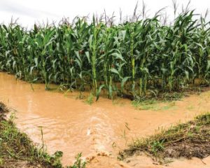 Agriculture-Industry_PR-Water_Image
